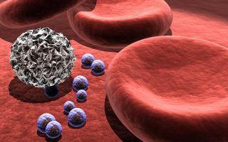 Норма тромбоцитов в крови у женщин по возрасту (таблица): причины отклонения