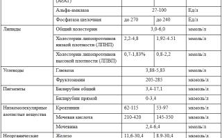Норма биохимического анализа крови у взрослых: таблица, показатели