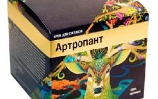 Цены на крем артропант и где его купить?