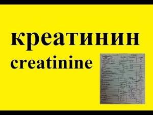 Что такое креатинин в биохимическом анализе крови?