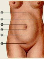 Фото размера плода на УЗИ на 11 неделе беременности: что видно?