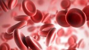Повышенные тромбоциты у ребенка в крови: причины, что делать?
