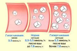 Нормы биохимического анализа крови у беременных