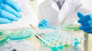 Анализ крови на гепатит: расшифровка, сколько делается, как сдать?
