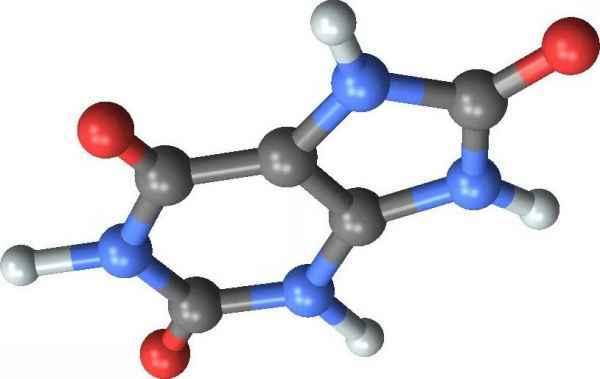 Норма мочевой кислоты в крови и возможные причины отклонений