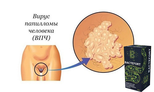 Отзывы врачей о bactefort – эффективен ли?