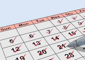 Гинекологическое УЗИ: как и на какой день цикла делают?