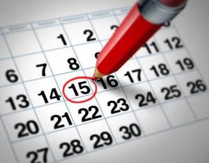 УЗИ малого таза: подготовка, как делают и на какой день цикла?