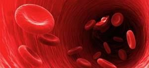 Низкий гемоглобин при беременности: причины, последствия, как повысить?
