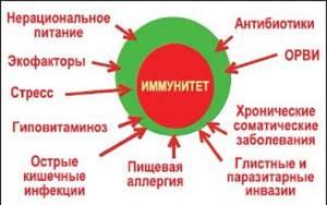 Иммунограмма: что показывает, расшифровка, норма (таблица)Иммунограмма: что показывает, расшифровка, норма (таблица)
