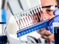 Анализ крови на глисты – как называется и как сдавать?
