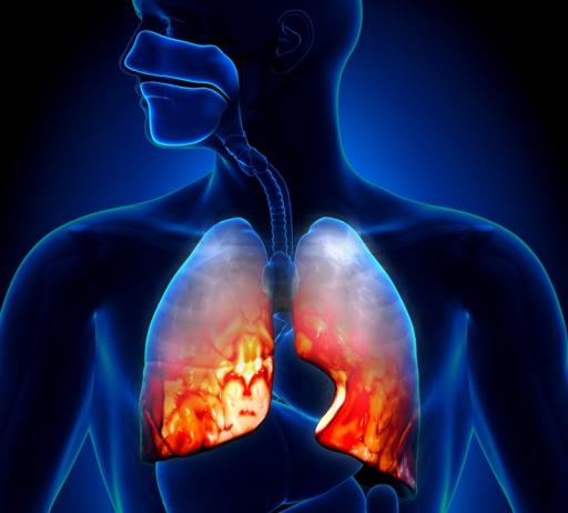 Анализ крови при пневмонии у ребенка и взрослого: можно ли определить болезнь?