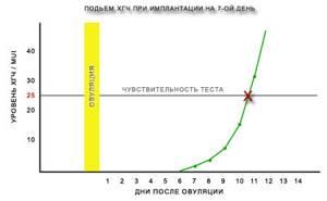 Анализ крови на ХГЧ: расшифровка результатов, когда сдавать?