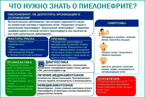 Анализ мочи при пиелонефрите: таблица показателей, нормы