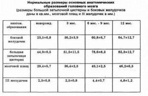 Нейросонография: таблица норм, расшифровка, до какого возраста делается?