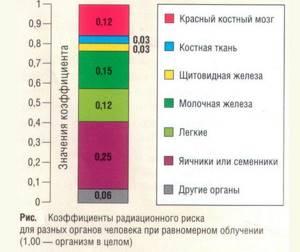 Как часто можно делать флюорографию легких – сколько раз в год?