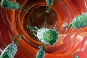 Анализ крови на стерильность – что показывает?