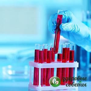 Биохимический скрининг 1 триместра: расшифровка результатов, нормы