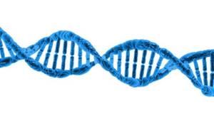 Тест ДНК на национальность: можно ли определить этническую принадлежность?