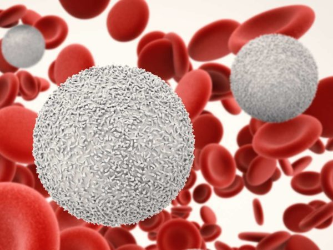 Как поднять лейкоциты быстро в домашних условиях?