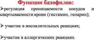 БАЗОФИЛЫ В КРОВИ: [что это, норма, функции] 3 Раздела