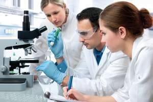 Щелочная фосфатаза в крови: что это такое и что показывает?