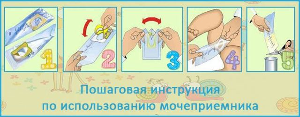 Анализ мочи по Нечипоренко: как собирать, что показывает, расшифровка, нормы