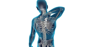 Рентген пояснично-крестцового отдела позвоночника: подготовка, как делают?