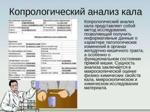 Анализ кала на копрограмму: расшифровка, что показывает?