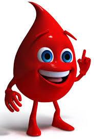 Препараты железа при низком гемоглобине у взрослых: обзор средств