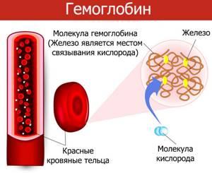 Гемоглобин в моче: что это значит, причины появления