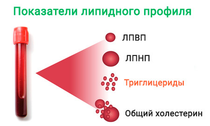 Что такое триглицериды в биохимическом анализе крови?