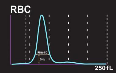 Индекс распределения эритроцитов понижен или повышен - что это значит?