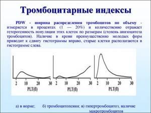 Ширина распределения тромбоцитов по объему повышена – что это значит?