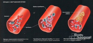 Расшифровка mpv в анализе крови: нормы и что делать если повышен?