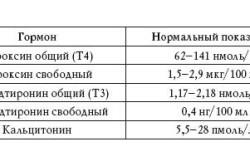 Нормы общего анализа крови у женщин и мужчин: таблицы и пояснения