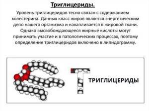 Триглицериды понижены: что это значит, причины