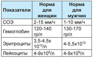 Норма эритроцитов в крови у мужчин по возрасту (таблица)