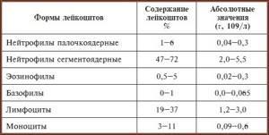 Палочкоядерные нейтрофилы: норма в крови, причины отклонения