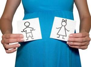 Когда можно определить пол ребенка на УЗИ – на каком сроке?