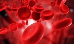 Показатели лимфолейкоза в анализе крови: каковы нормы?