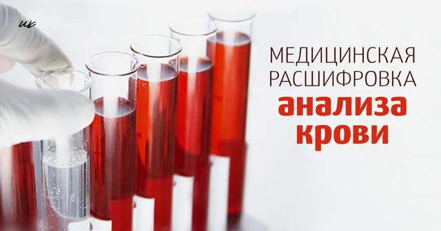 mchc в анализе крови: расшифровка, причины повышения, нормы