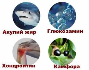 Акулий жир: цены, отзывы, польза и вред, инструкция